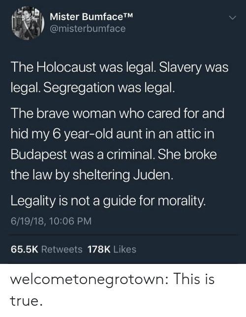 True, Tumblr, and Blog: Mister BumfaceTM  @misterbumface  The Holocaust was legal. Slavery was  legal. Segregation was legal.  The brave woman who cared for and  hid my 6 year-old aunt in an attic in  Budapest was a criminal. She broke  the law by sheltering Juden.  Legality is not a guide for morality.  6/19/18, 10:06 PM  65.5K Retweets 178K Likes welcometonegrotown: This is true.