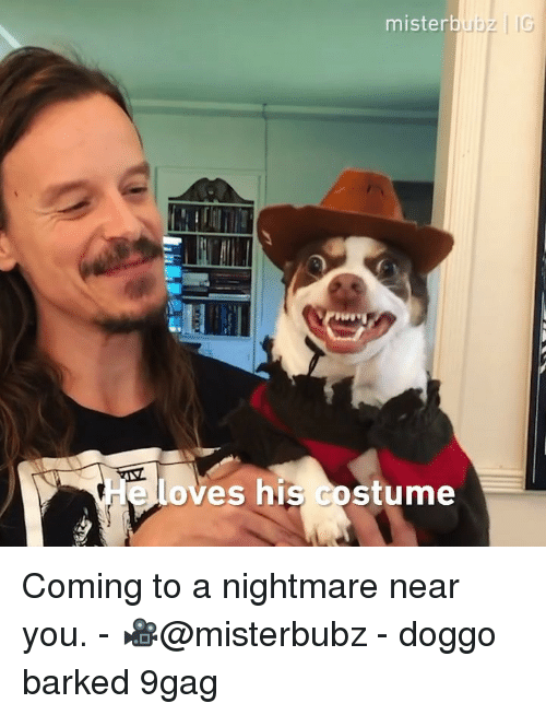 9gag, Memes, and 🤖: mister  loves his costume Coming to a nightmare near you. - 🎥@misterbubz - doggo barked 9gag