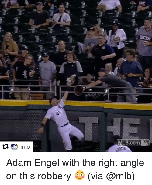 Mlb, Sports, and Com: MLB.com  ARDA  Lmlb Adam Engel with the right angle on this robbery 😳 (via @mlb)