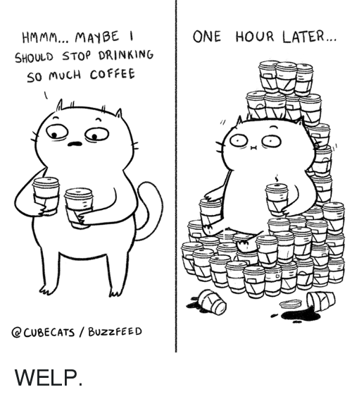 Drinking, Memes, and Buzzfeed: MMM... MAYBE  ONE HOUR LATER  SHOULD STOP DRINKING  SO MUCH COFFEE  C CUBECATS / BUzzfEED WELP.