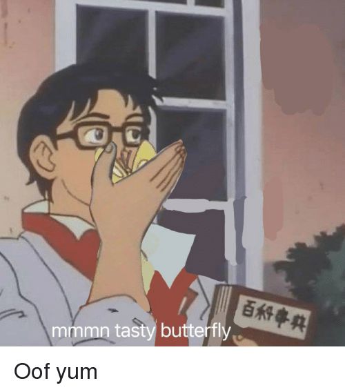 Butterfly, Dank Memes, and Yum: mmmn tasty butterfly Oof yum