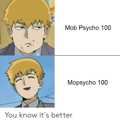 Mob Psycho 100 Mopsycho 100 You Know It's Better | Anaconda Meme on