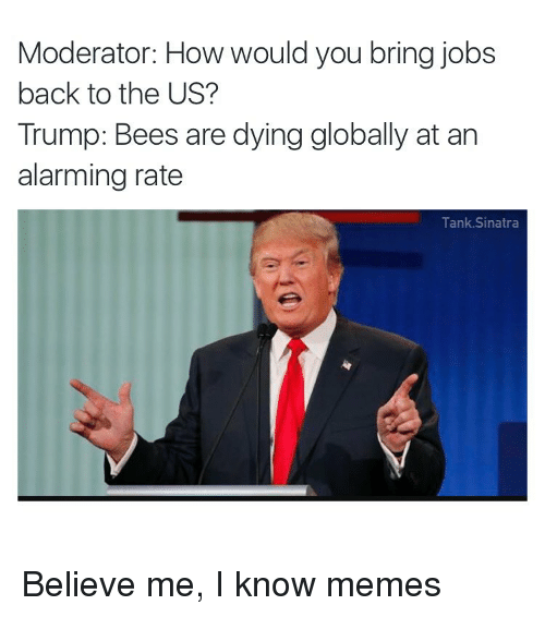 moderator how would you bring jobs back to the us 4101679 moderator how would you bring jobs back to the us? trump bees are