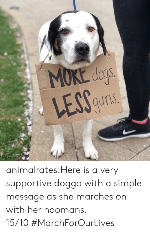 Instagram, Target, and Tumblr: MOKE dos  LEGS  auns animalrates:Here is a very supportive doggo with a simple message as she marches on with her hoomans. 15/10#MarchForOurLives