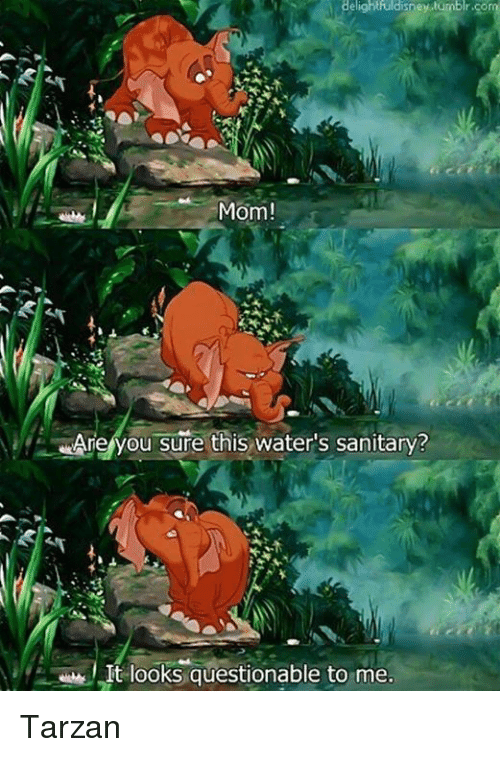 Memes, Tarzan, and Mom: Mom!  Are you sure this water's sanitary?  It looks questionable to me. Tarzan