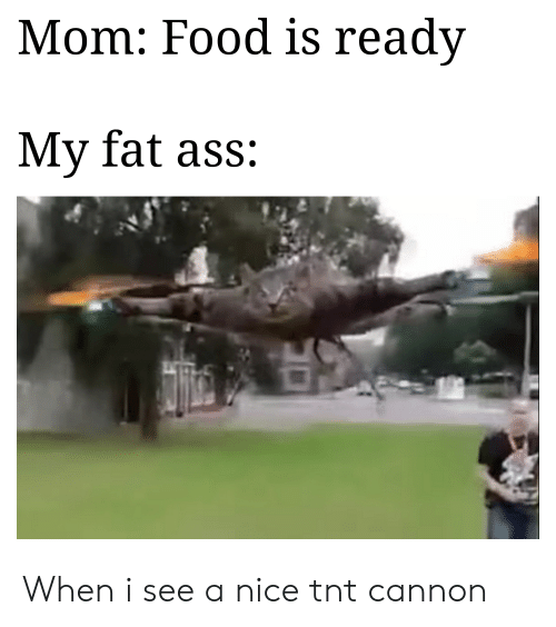 Ass, Fat Ass, and Food: Mom: Food is readv  My fat ass: When i see a nice tnt cannon