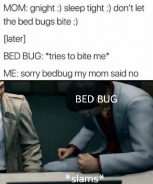 "Sorry, Bed Bugs, and Sleep: MOM: gnight:) sleep tight) don't let  the bed bugs bite:)  [later]  BED BUG: ""tries to bite me  ME: sorry bedbug my mom said no  BED BUG  slams*"