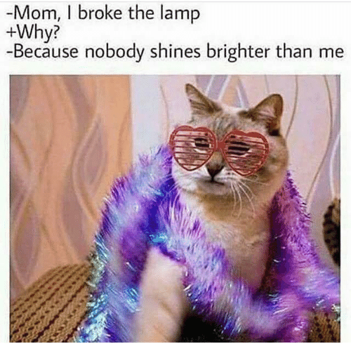 Dank Memes, Mom, and Lamp: -Mom, I broke the lamp  +Why?  -Because nobody shines brighter than me