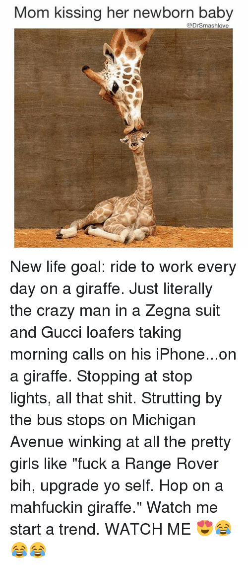 "Gucci, Iphone, and Memes: Mom kissing her newborn baby  @Drsmashlove New life goal: ride to work every day on a giraffe. Just literally the crazy man in a Zegna suit and Gucci loafers taking morning calls on his iPhone...on a giraffe. Stopping at stop lights, all that shit. Strutting by the bus stops on Michigan Avenue winking at all the pretty girls like ""fuck a Range Rover bih, upgrade yo self. Hop on a mahfuckin giraffe."" Watch me start a trend. WATCH ME 😍😂😂😂"