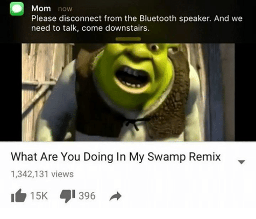 Bluetooth, Mom, and Speaker: Mom now  Please disconnect from the Bluetooth speaker. And we  need to talk, come downstairs.  What Are You Doing In My Swamp Remix-  1,342,131 views  1白15K 1396 →