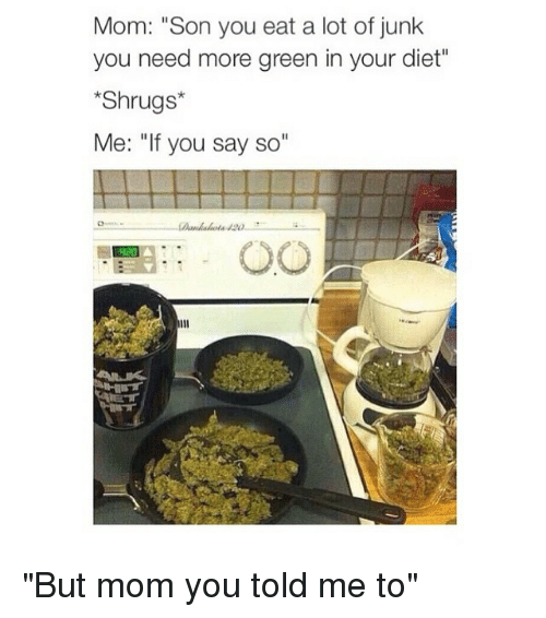 """Dieting, Moms, and Girl Memes: Mom: """"Son you eat a lot of junk  you need more green in your diet""""  Shrugs  Me: """"If you say so """"But mom you told me to"""""""