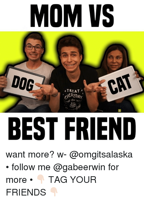 Best Friend, Friends, and Memes: MOM VS  DOG  TREAT  ERYDAY  CAT  BEST FRIEND want more? w- @omgitsalaska • follow me @gabeerwin for more • 👇🏻 TAG YOUR FRIENDS 👇🏻