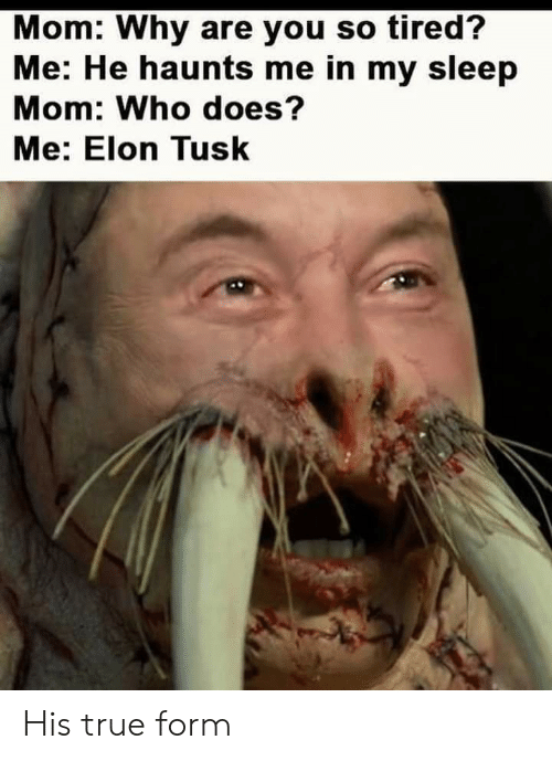 True, Tusk, and Sleep: Mom: Why are you so tired?  Me: He haunts me in my sleep  Mom: Who does?  Me: Elon Tusk His true form