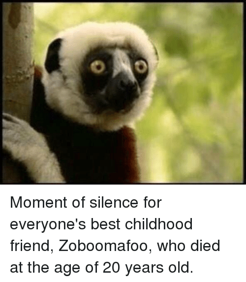 moment of silence for everyone s best childhood friend zoboomafoo