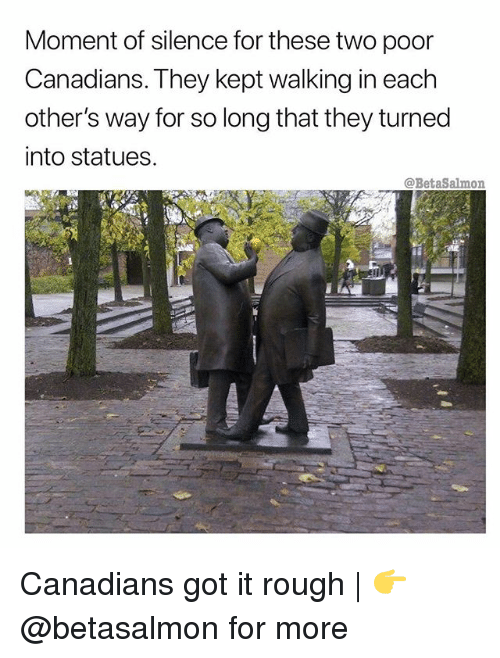 Memes, Rough, and Silence: Moment of silence for these two poor  Canadians. They kept walking in each  other's way for so long that they turned  into statues,  @BetaSalmon Canadians got it rough | 👉 @betasalmon for more