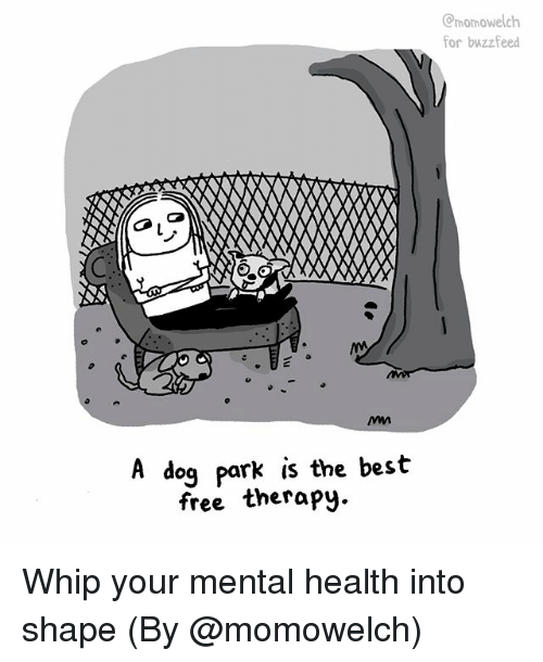 Memes, Whip, and Best: momowelch  for buzzfeed  A dog park is the bes't  free therapy. Whip your mental health into shape (By @momowelch)