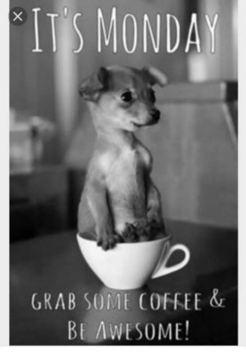monday grab s mt coffee be awesome 5023850 monday grab s mt coffee be awesome! meme on me me