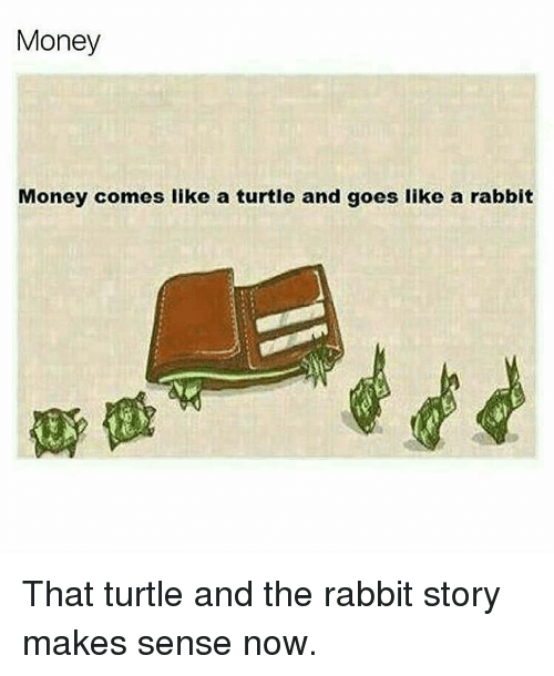 Memes, Rabbit, and Turtle: Money  Money comes like a turtle and goes like a rabbit That turtle and the rabbit story makes sense now.