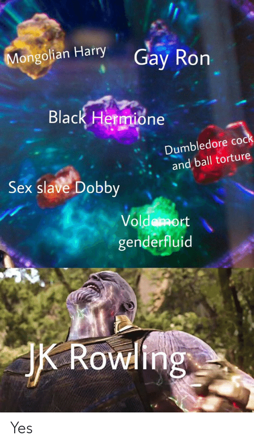 Dumbledore, Hermione, and Sex: Mongolian Harry  Gay Ron  Black Hermione  Dumbledore cock  and ball torture  Sex slave Dobby  Voldemort  genderfluid  Rowling Yes