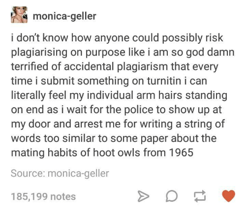 God, Police, and Monica Geller: monica-geller  I don't know how anyone could possibly risk  plagiarising on purpose like i am so god damn  terrified of accidental plagiarism that every  time i submit something on turnitin i can  literally feel my individual arm hairs standing  on end as i wait for the police to show up at  my door and arrest me for writing a string of  words too similar to some paper about the  mating habits of hoot owls from 1965  Source: monica-geller  185,199 notes