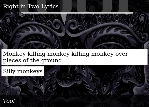 Monkey Killing Monkey Killing Monkey Over Pieces of the