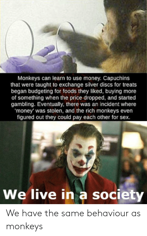 Money, Sex, and Live: Monkeys can learn to use money. Capuchins  that were taught to exchange silver discs for treats  began budgeting for foods they liked, buying more  of something when the price dropped, and started  gambling. Eventually, there was an incident where  'money' was stolen, and the rich monkeys even  figured out they could pay each other for sex.  We live in a society We have the same behaviour as monkeys