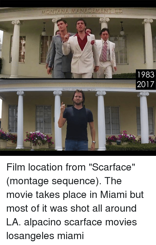 MONTANA MANAGEMENT CO 1983 2017 Film Location From Scarface