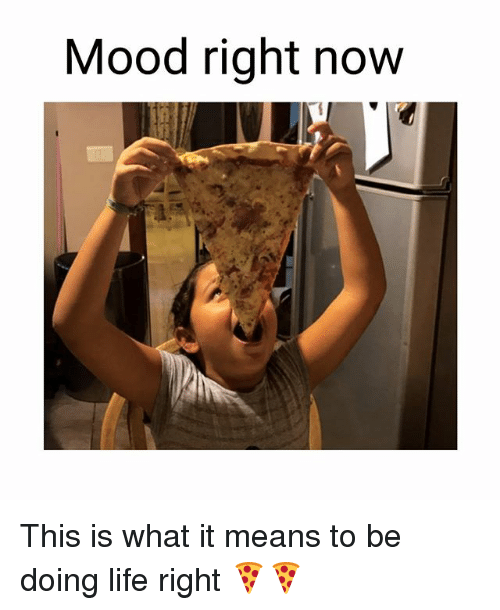 Life, Memes, and Mood: Mood right now This is what it means to be doing life right 🍕🍕