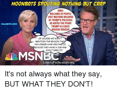 Memes, Omg, and Lost: MOONBATS SPOUTING NOTHING BUT CRAP  OMG!  MILLIONS OF PEOPLE  LOST WELFARE BECAUSE  OF TRUMP'S POLICIES!  HE HATES THE POOR!  TRUMP IS A NAZI!  USSIA! RUSSIA!  04ANEWS.COM  OF COURSE WE WON'T  MENTION THE REASON THE  NO LONGER HAVE WELFARE IS  BECAUSE THEY HAVE A JOB AND  DON'T NEED IT!  MSNBC  LibertyFederation.org It's not always what they say, BUT WHAT THEY DON'T!