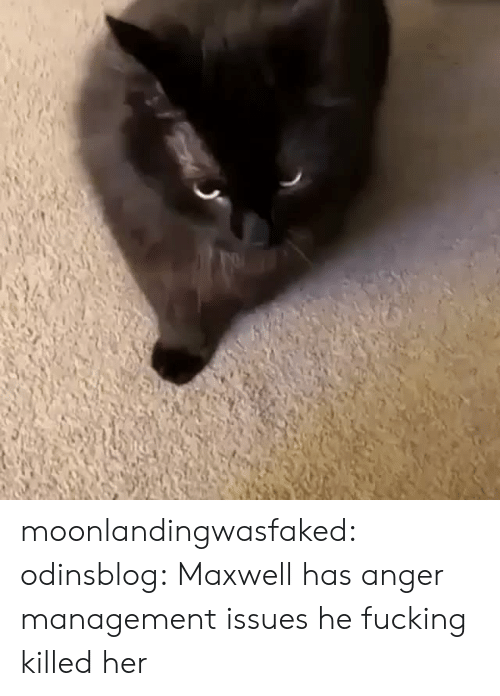 Fucking, Tumblr, and Blog: moonlandingwasfaked: odinsblog:   Maxwell has anger management issues   he fucking killed her
