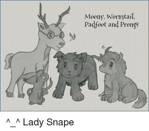 wormtail padfoot prongs