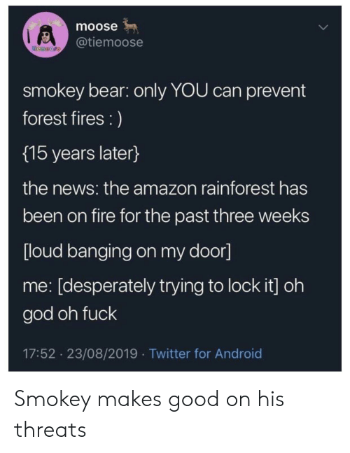 Amazon, Android, and Fire: moose  @tiemoose  temoore  smokey bear: only YOU can prevent  forest fires :)  {15 years later}  the news: the amazon rainforest has  been on fire for the past three weeks  [loud banging on my door]  me: [desperately trying to lock it] oh  god oh fuck  17:52 23/08/2019 Twitter for Android Smokey makes good on his threats