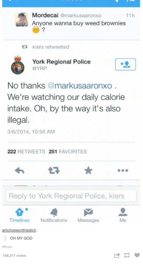 God, Oh My God, and Police: Mordecai  markusaaronxo  11h  Anyone wanna buy weed brownies  ta kiers retweeted  York Regional Police  @YRP  No thanks  markusaaronxo  We're watching our daily calorie  intake. Oh, by the way it's also  illegal  3/6/2014, 10:56 AM  222  RETWEETS 251  FAVORITES  Reply to York Regional Police, kiers  Timeliness  Notifications  Messages  Me  artichoke onthisdick.  OH MY GOD  158,317 notes