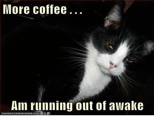Memes, Coffee, and Running: More coffee.  Am running out of awake  COM