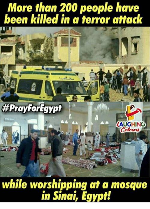 Bailey Jay, Egypt, and Indianpeoplefacebook: More than 200 people have  been killed in a terror attack  #PrayForEgypt  LAUGHING  while worshipping at a mosque  in Sinai, Egypt!