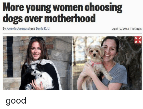 Dogs, Good, and Women: More young women choosing  dogs over motherhood  By Antonio Antenucci and David K. L  April 10, 2014 | 10:46pm <p>good</p>