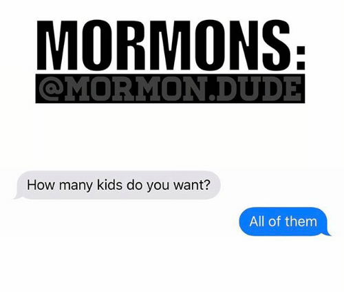 Dude, Memes, and Kids: MORMONS  MIORMION DUDE  How many kids do you want?  All of them