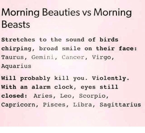 Beautiful, Clock, and Dank: Morning Beauties vs Morning  Beasts  Stretches to the sound of birds  chirping, broad smile on their face  Taurus, Gemini, Cancer, Virgo,  Aquarius  will probably kill you  Violently  With an alarm clock, eyes still  closed Aries, Leo, Scorpio  Capricorn, Pisces, Libra, Sagittarius