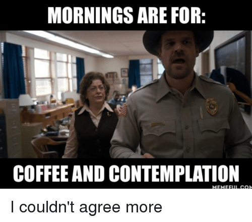 Mornings Are For Coffee And Contemplation Meme Full Com I Couldnt