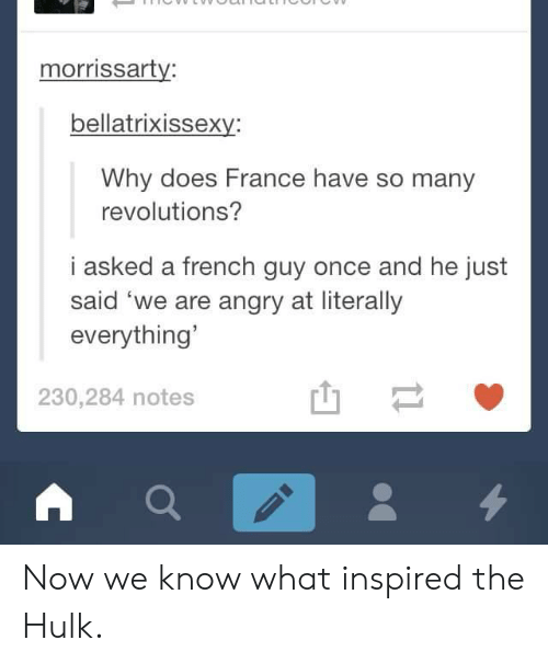 Hulk, France, and Angry: morrissarty:  bellatrixissexy:  Why does France have so many  revolutions?  i asked a french guy once and he just  said 'we are angry at literally  everything'  230,284 notes Now we know what inspired the Hulk.