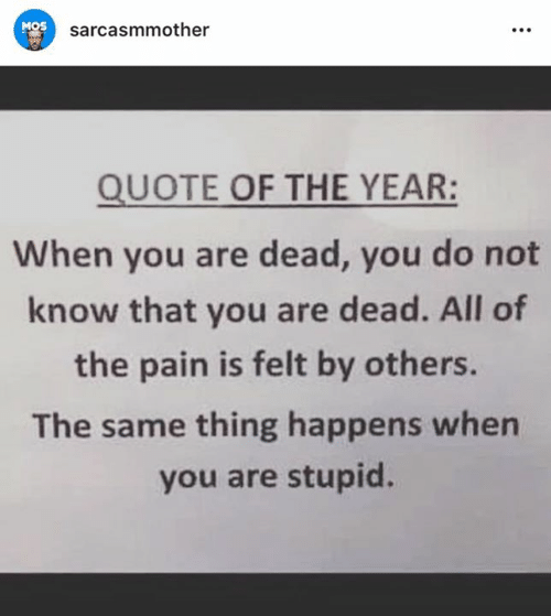 Memes, Pain, and All of The: MOS  sarcasmmother  QUOTE OF THE YEAR:  When you are dead, you do not  know that you are dead. All of  the pain is felt by others.  The same thing happens when  you are stupid.