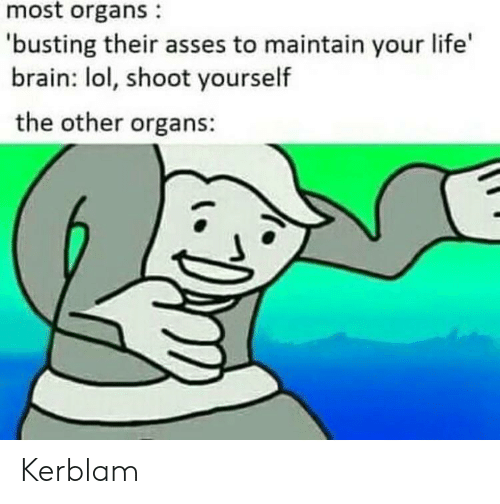 Life, Lol, and Brain: most organs  'busting their asses to maintain your life  brain: lol, shoot yourself  the other organs: Kerblam