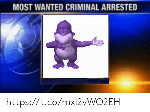 Wanted, Criminal, and Most Wanted: MOST WANTED CRIMINAL ARRESTED https://t.co/mxi2vWO2EH