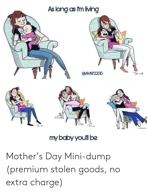 Mother, Mini, and Charge: Mother's Day Mini-dump (premium stolen goods, no extra charge)