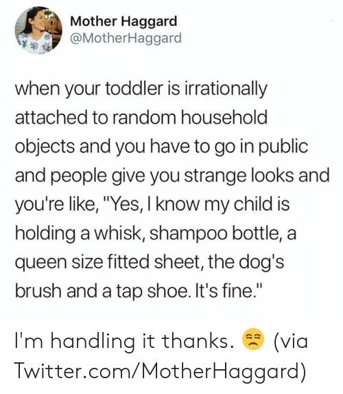 "Dank, Dogs, and Twitter: Mother Haggard  @MotherHaggard  when your toddler is irrationally  attached to random household  objects and you have to go in public  and people give you strange looks and  you're like, ""Yes, I know my child is  holding a whisk, shampoo bottle, a  queen size fitted sheet, the dog's  brush and a tap shoe. It's fine."" I'm handling it thanks. 😒  (via Twitter.com/MotherHaggard)"