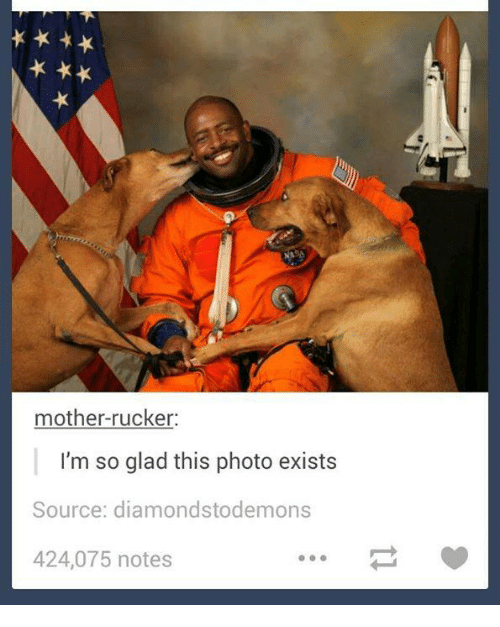 8e45df3d7 mother-rucker-im -so-glad-this-photo-exists-source-diamondstode-mons-16765618.png