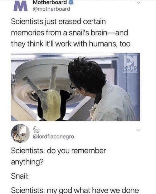 Dank, God, and Work: Motherboard  @motherboard  Scientists just erased certain  memories from a snail's brain-and  they think it'll work with humans, too  DANK  MMECLOGY  @lordflaconegro  Scientists: do you remember  anything?  Snail:  Scientists: my god what have we done