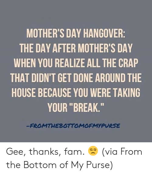 "Dank, Fam, and Mother's Day: MOTHER'S DAY HANGOVER  THE DAY AFTER MOTHER'S DAY  WHEN YOU REALIZE ALL THE CRAP  THAT DIDN'T GET DONE AROUND THE  HOUSE BECAUSE YOU WERE TAKING  YOUR ""BREAK.""  FROMTHEBOTTOMOFMYPURSE Gee, thanks, fam. 😒  (via From the Bottom of My Purse)"