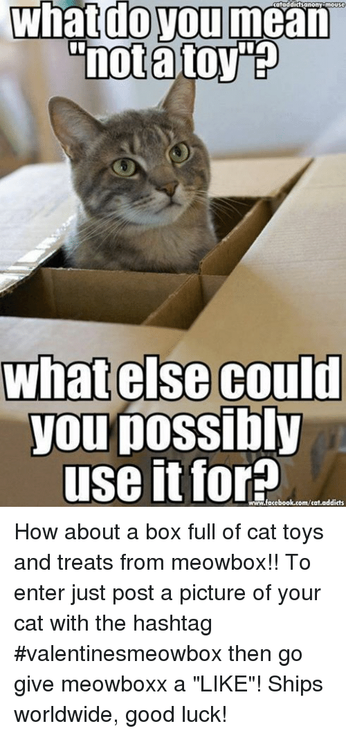 """Memes, Toys, and Luck: mouse  What do you mean  """"notato  what else could  you possibly  use it for  addicts  www.facebook.com/cat How about a box full of cat toys and treats from  meowbox!! To enter just post a picture of your cat with the hashtag #valentinesmeowbox then go give meowboxx a """"LIKE""""! Ships worldwide, good luck!"""