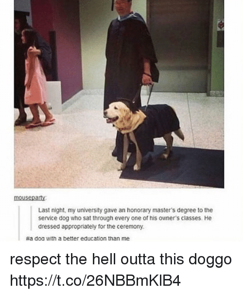 Memes, Respect, and Masters: mousepaty  Last night, my university gave an honorary master's degree to the  service dog who sat through every one of his owner's classes. He  dressed appropriately for the ceremony.  #a doa with a better education than me respect the hell outta this doggo https://t.co/26NBBmKlB4